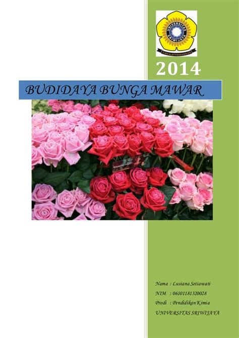 makalah budidaya bunga mawar