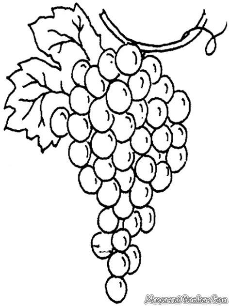 gambar buah anggur jongose