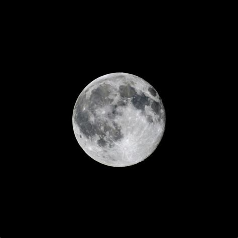 full strawberry moon full strawberry moon june 2016 square photograph by terry