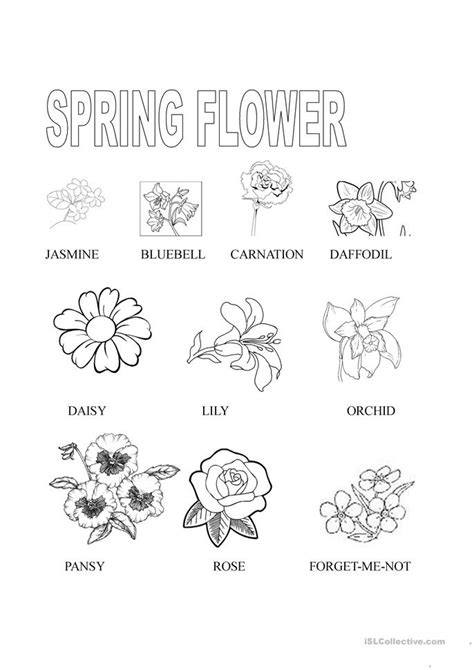 printable worksheets about flowers number names worksheets 187 flower worksheets for