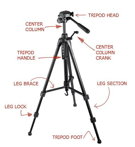tripod parts diagram ultimate guide the 9 best tripods crush the