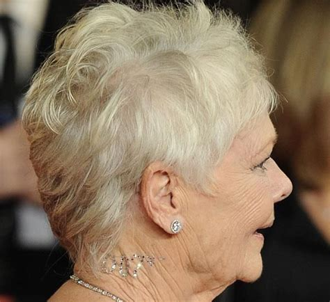 how to get judi dench hairstyle best 25 judi dench hairstyle ideas on pinterest judy