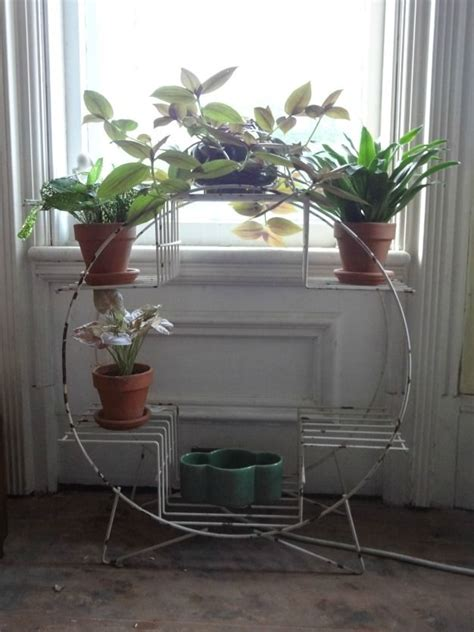 magical plant stands plant stand indoor plant stand plants