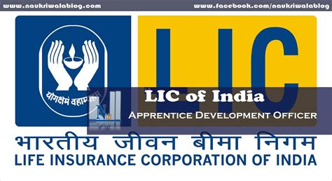 Insurance Mba In India by Lic Of India Apprentice Development Officer Government