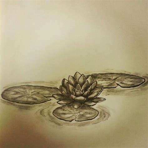 lily pad tattoo lilly pad water lilly lotus flower sketch by