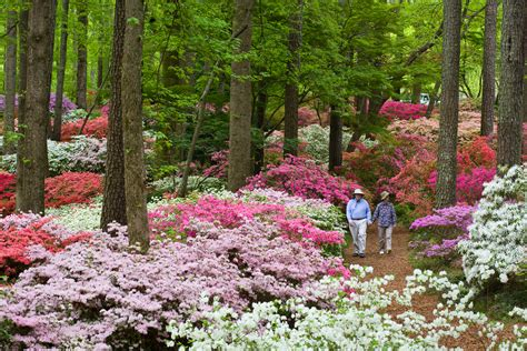 Callaway Gardens by 7 Places In You To Visit That You Didn T
