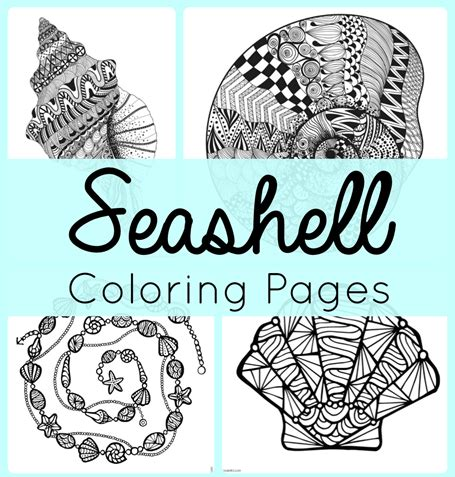 seashell color printable seashell coloring pages coloring me printable