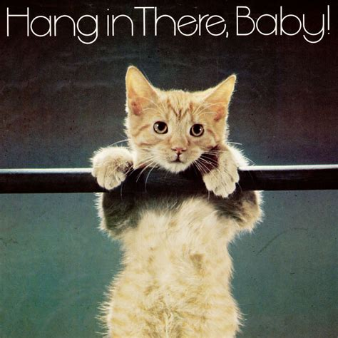 Hang In There Cat Meme - 10 nihilistic memes that help lala sleep at night pics