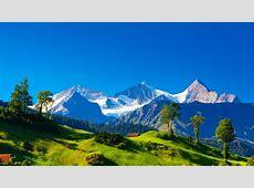 桌布 瑞士,阿爾卑斯山,高山,綠草,樹木,藍天 2560x1600 HD 高清桌布, 圖片, 照片 Iphone 5c Green Wallpaper