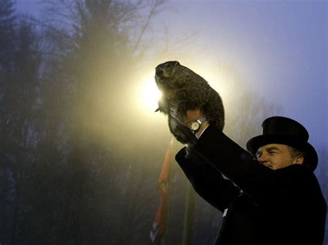 groundhog day no shadow meaning wbir groundhog day 2016 no shadow means early