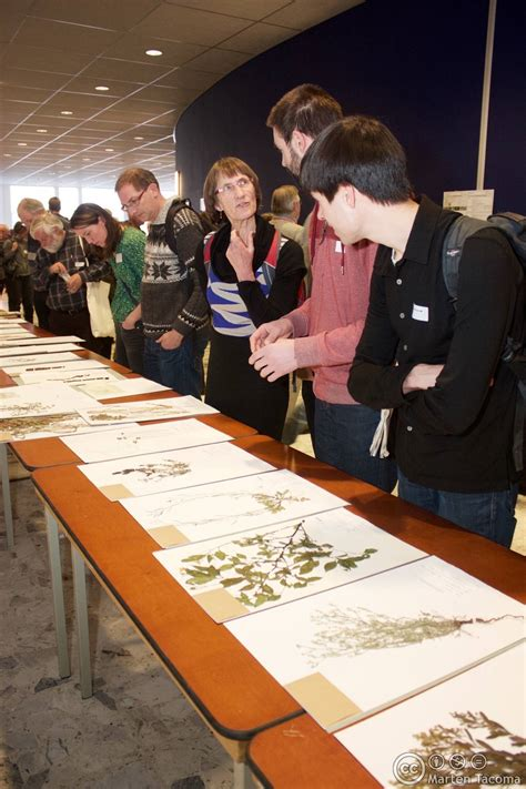 Nationaal Herbarium Nederland » Home Design 2017