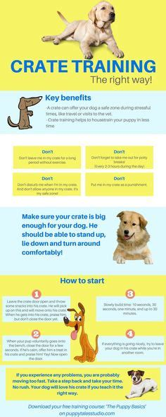 puppy tips for the week puppy development stages with growth charts and week by week guide week by week we