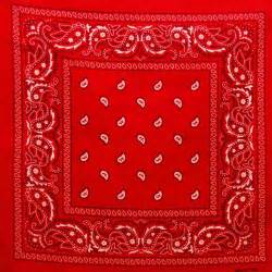 Red And Brown Curtains Classic Paisley Retro Bandana