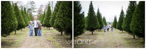 grant christmas tree farm christmas decore