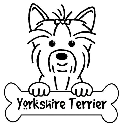 coloring pages yorkie yorkie yorkshire and simple drawings on pinterest