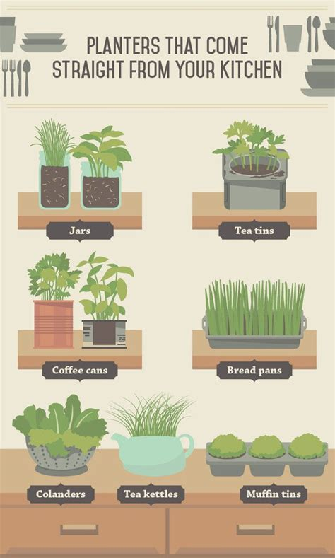 a guide to indoor gardening cnn the essential guide to growing veggies indoors no garden