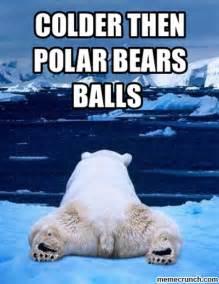 Polar Bear Meme - polar bear meme memes