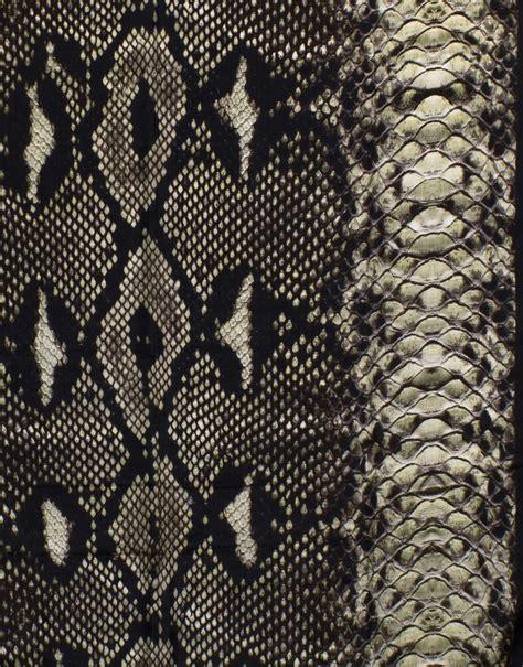 Snake Print snake print scarf
