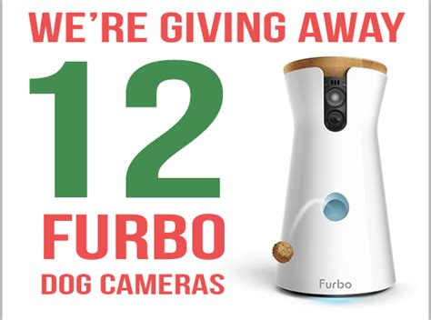 Camera Giveaway 2016 - christmas archives best pet cam
