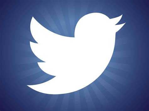 white twitter bird logo new twitter bird logo
