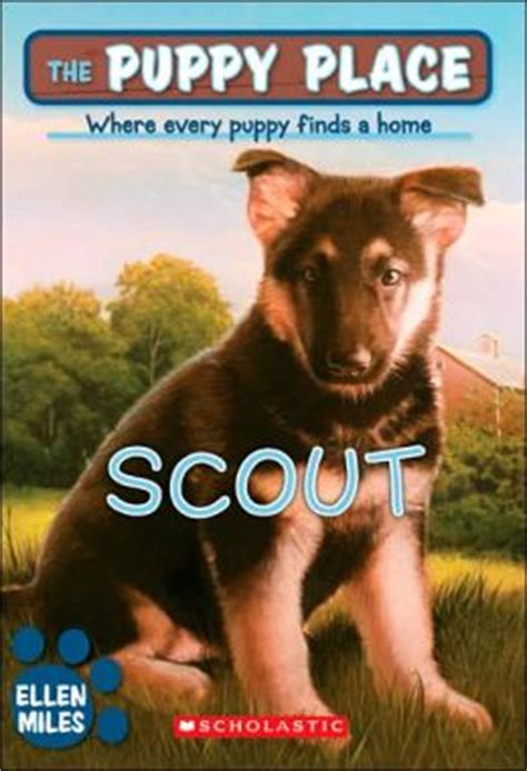 puppy place series scout the puppy place series by 9780439874120 paperback barnes noble