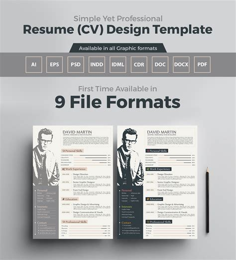 simply professional resume format doc 9 download cv sample doc