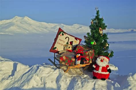 christmas scenery video search engine at search com