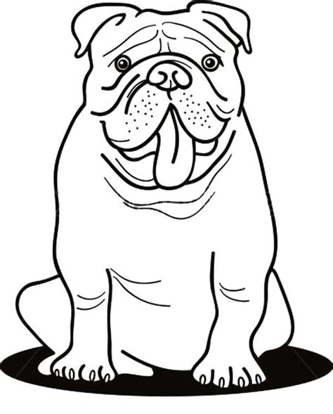 Free British Bulldog Coloring Pages Bulldog Coloring Pages