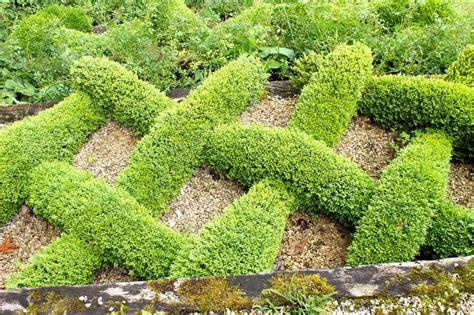 carpenter garden boxwood knot garden knotengarten knot garden