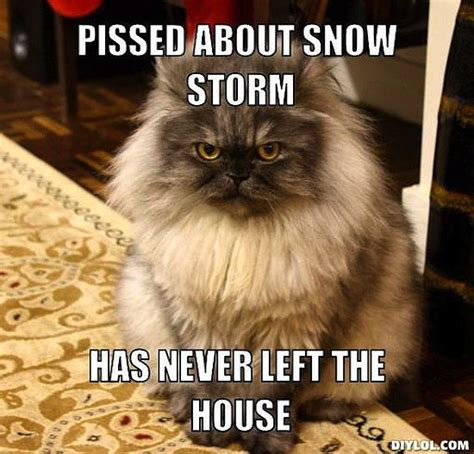 Blizzard Meme - blizzard memes popsugar tech