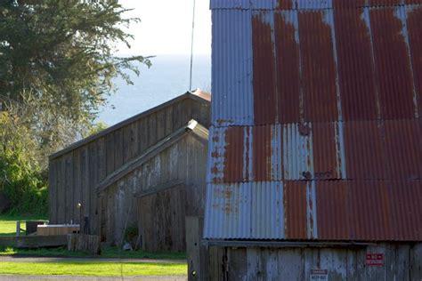 Barn Call call barn
