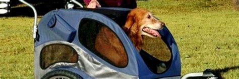 strollers for large dogs strollers and bicycle trailers for large dogs strollers trailers