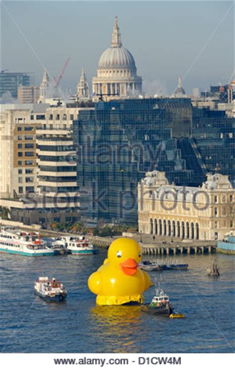 river thames yellow boards stunt on river thames with large yellow duck being towed