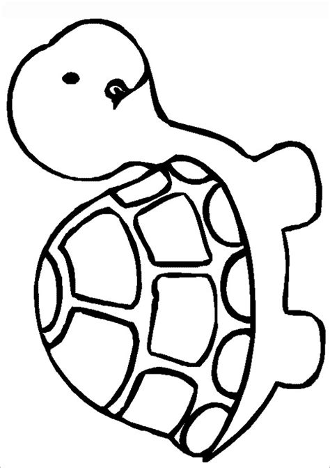 turtle template clipart best