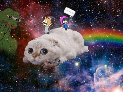 space cat wallpaper tumblr space cat wallpaper tumblr www pixshark com images