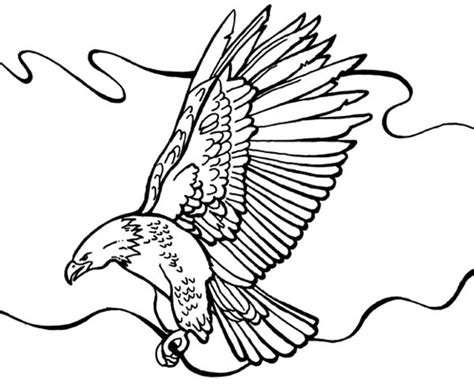 coloring page of eagle flying eagle free colouring pages