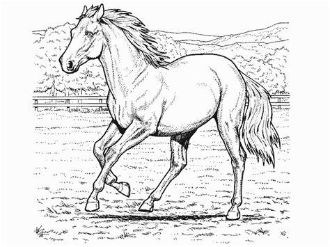 printable html page sparet er tjent heste tegninger