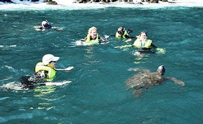glass bottom boat galapagos galapagos islands location map how to get there