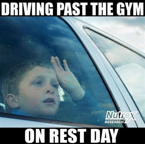 Rest Day Meme - so me i m like quot well i can just lift lighter quot haha
