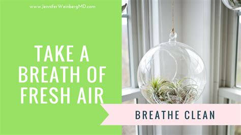 Freshair Detox Shoo by 4 Key Steps To Clean Your Health