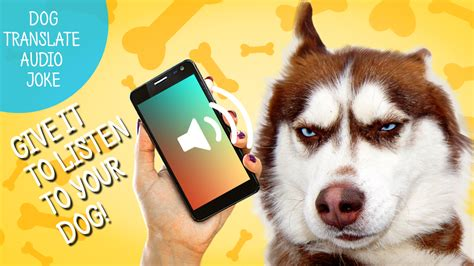 puppy translator translator audio joke 1 2 apk simulation