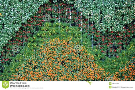 Flower Wall Vertical Garden Royalty Free Stock Image