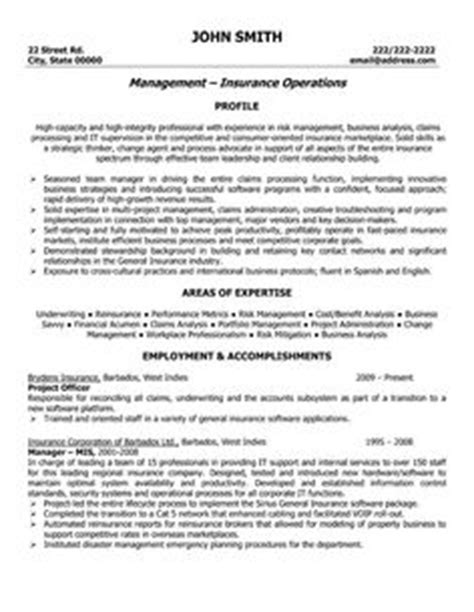 outstanding cto resume professionals project officer resume resume ideas