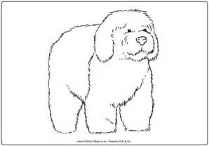 coloring pages of sheep dogs sheepdog colouring page