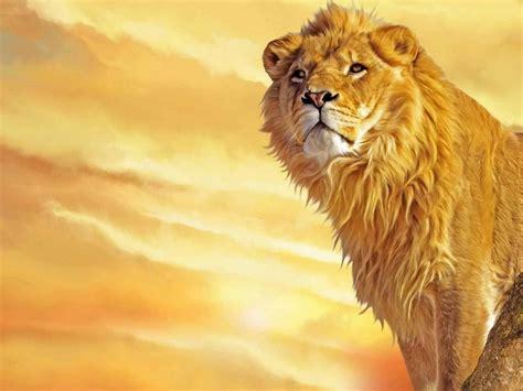 imagenes de leones rugientes cuento breve recomendado el le 243 n y la fiebre