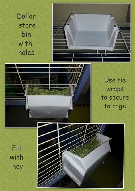How To Make A Hay Rack For Guinea Pigs by Create A Cheap Hay Rack For Your Guinea Pig Or Rabbit It