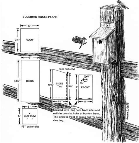 bluebird house pattern bluebird house plans critter crafts pinterest