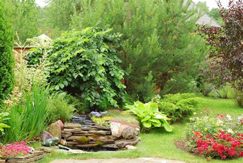 imagenes jardines hermosos fotos de jardines hermosos imagui