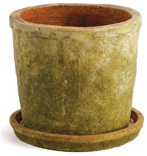 Large Planter Saucers by Large Moss Finish Pot Saucer Set Plant Pots Planters By Zulily