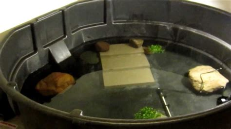 Stock Tank Bathtub 300 Gallon Snapping Turtle Cage Setup Youtube